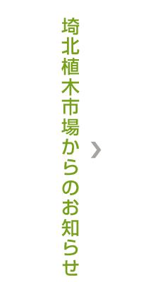 埼北植木市場からのお知らせ